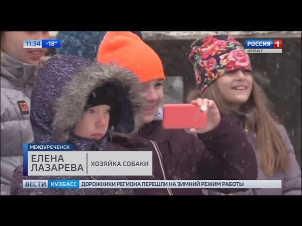 Юные жители Междуреченска познакомились с профессией кинолога