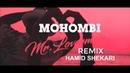 MOHOMBI Mr Loverman HAMID SHEKARI REMIX