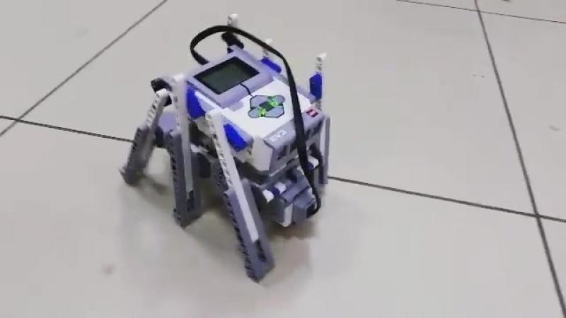 Учебый центр NEXT LEVEL. Робот-сороконожка