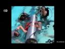 Субмарина Илона Маска которую он хочет предложить для спасения тайских подростков построена из частей ракеты Falcon 9