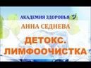 ДЕТОКС КАК ДЕЛАТЬ ЛИМФООЧИЩЕНИЕ ЛИМФООЧИСТКА Анна Седнева