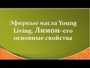 Эфирные масла Young Living Свойства эфирного масла лимона