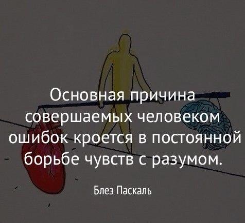 https://pp.userapi.com/c831309/v831309089/921a1/_5v2Px5sTug.jpg