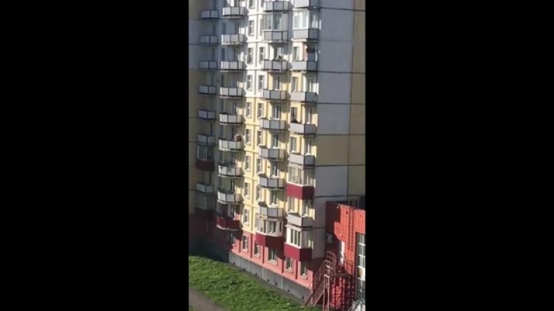 дети ходят друг к другу в гости через балконЭто видео сняли очевидцы из Новокузнецка