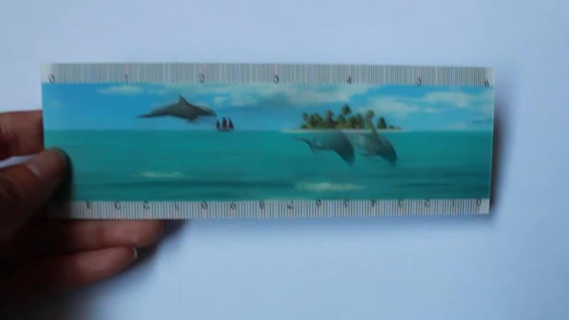 Motion 4D Lenticular Ruler Jumping Dolphin