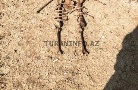 Mikayıl Müşfiqə aid olduğu ehtimal edilən skeletin FOTOSU: Alnında iki güllə yeri var