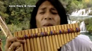 Leo Rojas - Mother Earth There Is A Place - Beautiful Colors Of Animals ( South America ) 💚👍