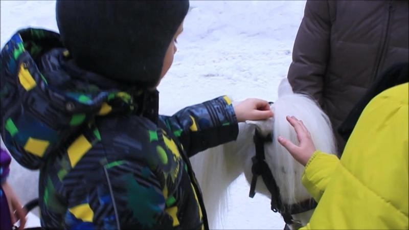 Частная школа Чаша: катаемся на маленькой лошадке
