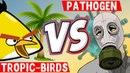 Где можно больше заработать, TROPIC BIRDS VS PATHOGEN, Сравнение экономических игр💲