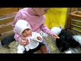 В трогательном зоопарке с куклами Нелей и Ромой