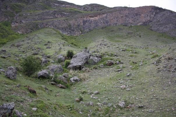 Вообще-то Чулышманское нагорье известно своими останцами — это вот как раз куски скалы, которые остались от прежнего величия, а всё остальное смыло или выветрилось. Каменные грибы — останцы.