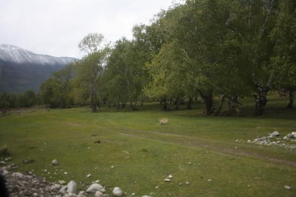 Полянка у деревни Кё.