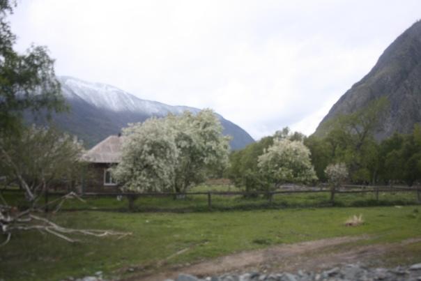 Деревня Кё.