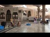 Процесс ремонта мраморных плит в мечети пророка