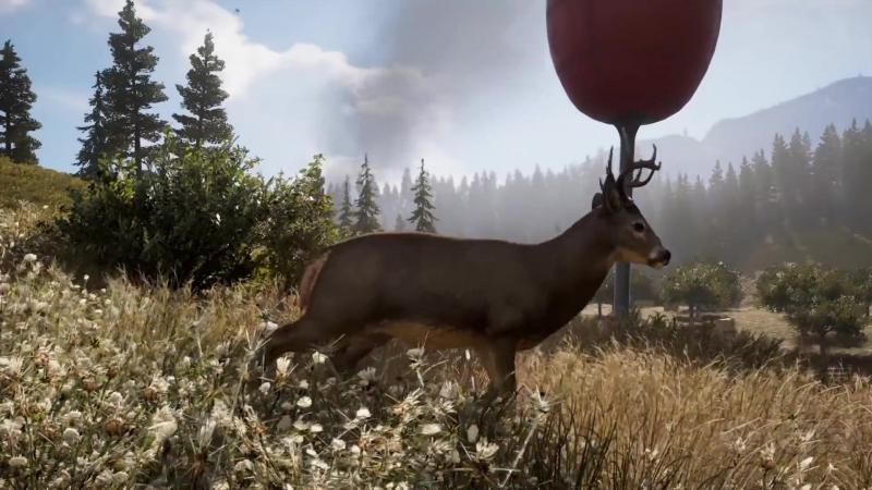 Животный мир в Far Cry 5