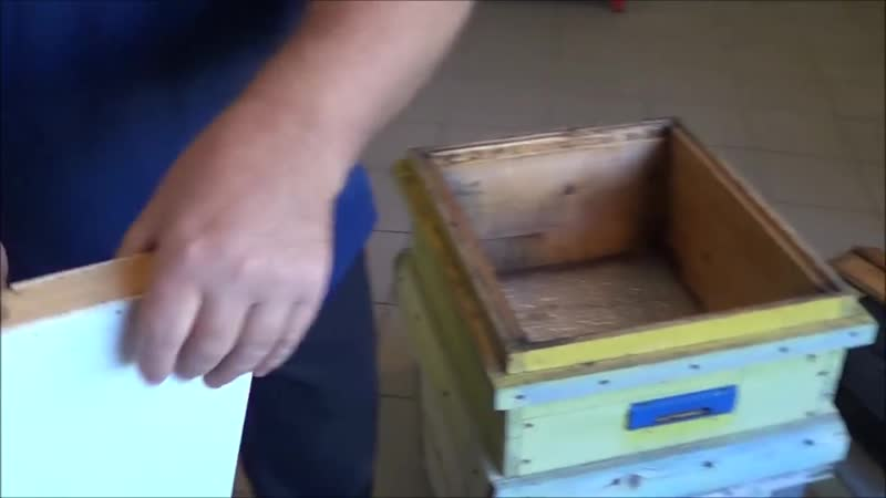 Сокращение гнезд Отстройка вощины