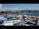 порт Айя Напы