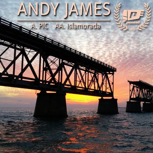 Andy James альбом PIC