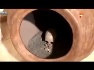 РенТВ издевается над самым древним народом -D.mp4
