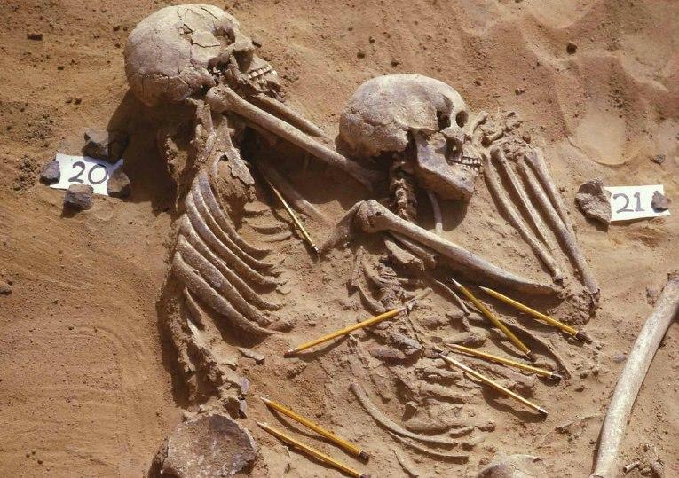 Под Иркутском обнаружили кости им больше 50 тысяч лет