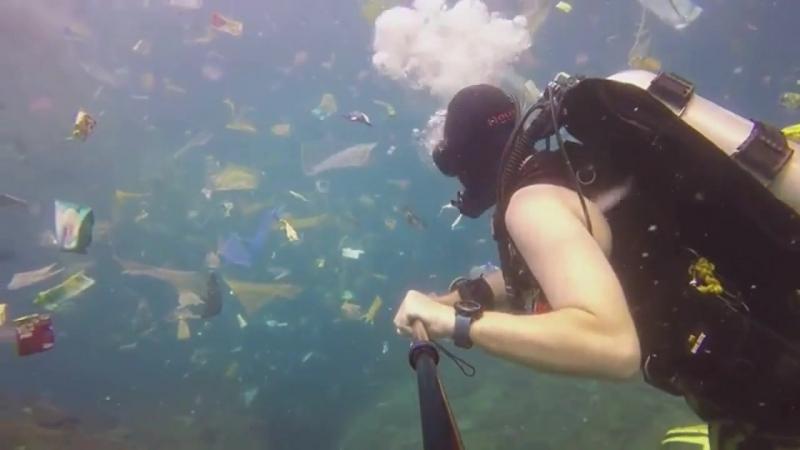 Дайвинг Рича Хорнера - в море на Бали как в мусоропроводе