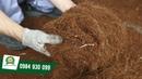 Máy băm nghiền xơ dừa 3A15Kw Máy xử lý phụ phẩm nông nghiệp