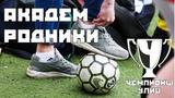 Академ - Родники