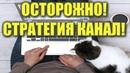 Прибыльная Стратегия КАНАЛ Для Бинарных Опционов Трейдер Роман Алмазов