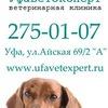 Ветеринарная клиника УфаВетЭксперт Ветклиника