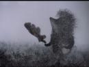 Ёжик в тумане. 1975 г. Реж. Юрий Норштейн.