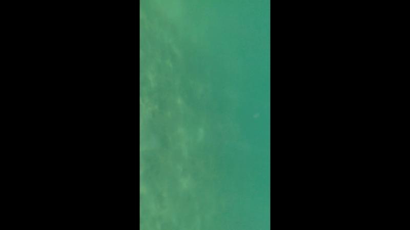 Тайланд, Пхукет - подводный мир на пляже Три-Транг
