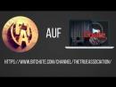 Dennis Ingo Schulz TTA auf BitChute (Bitte Account erstellen abonnieren