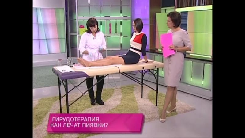 Гирудотерапия как лечат пиявки Школа здоровья 04 10 2014 GuberniaTV