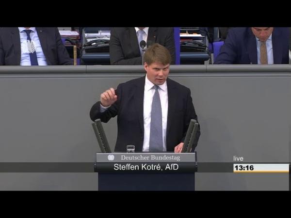 08.06.2018 Steffen Kotre AfD Windräder töten