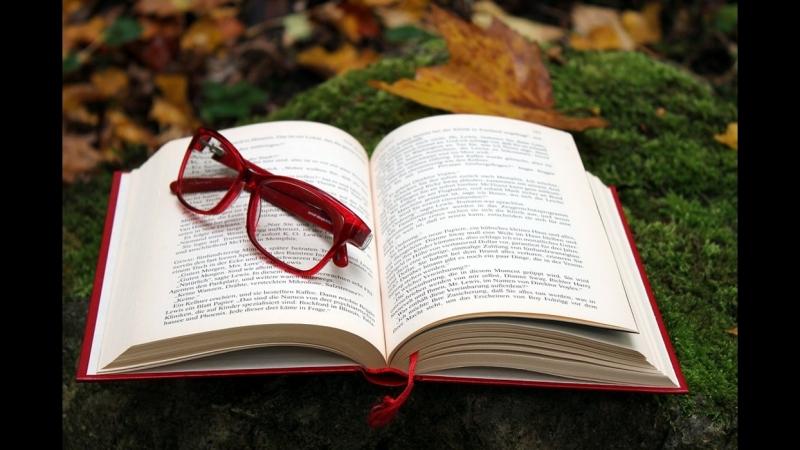 Книга ищет читателя Выпуск 2
