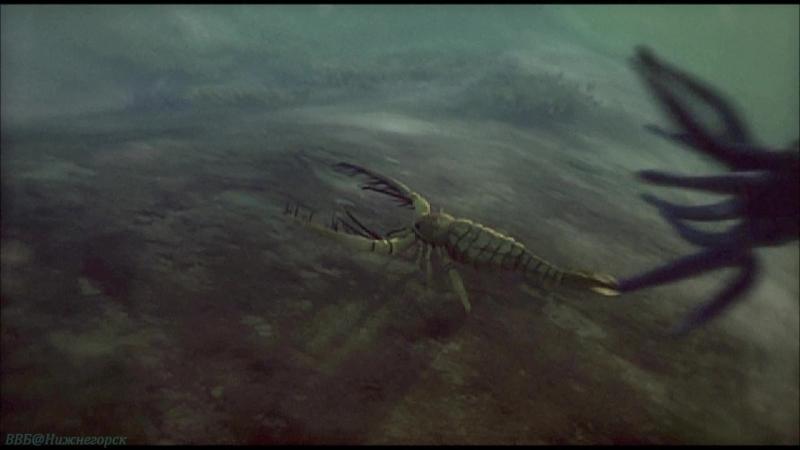 Discovery Армагеддон животных 1 Лучи смерти Познавательный природа 2009