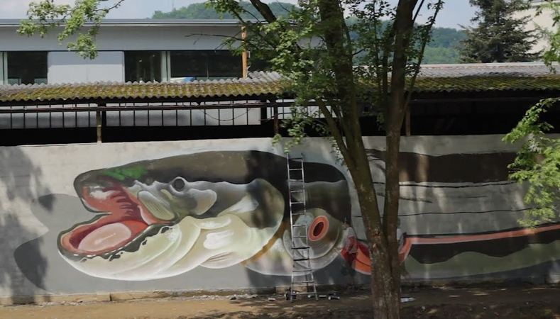 Nychos giant Catfish seen in Styria