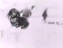 1912, Экспедиция Георгия Седова на Северный полюс. В кадре Архангельск, Карское