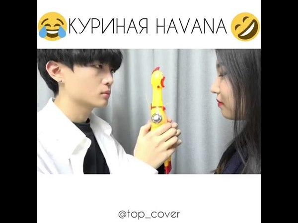 КУРИНАЯ HAVANA 😆😂😃😀 / CAMILA CABELLO - HAVANA chicken cover 🤣🤣🤣🤣
