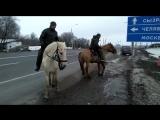 На лошадях в Мекку