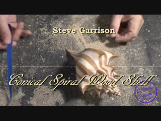 Conical spiral wood shell