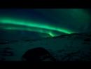 Arctic motion