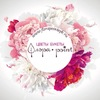 Flora • Point • New • Цветы СПб