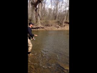 First steelhead trout