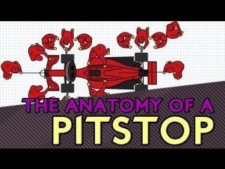 Анатомия пит-стопов