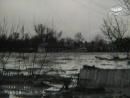 Київський потоп куренівська трагедія 1961р