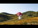 Приветственный ролик | Женское счастье 2.0.