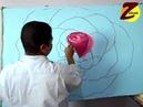 كيفية رسم الورد البلدى