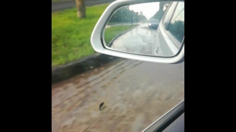 В Ростове небольшой дождь 🌊🌊🌊