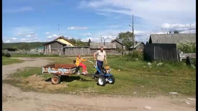 Прокати нас, Лолита, на тракторе!